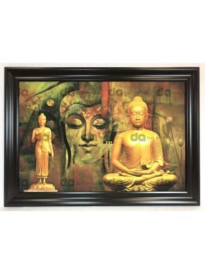 BUDHA 15