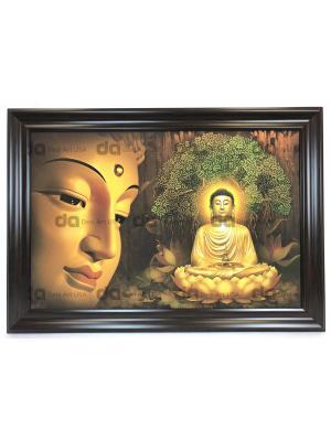 BUDHA 23